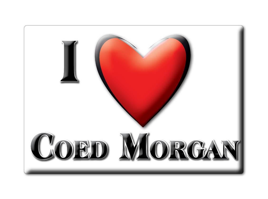 SOUVENIR-UK-WALES-MONMOUTHSHIRE-FRIDGE-MAGNET-UK-I-LOVE-COED-MORGAN-CYM