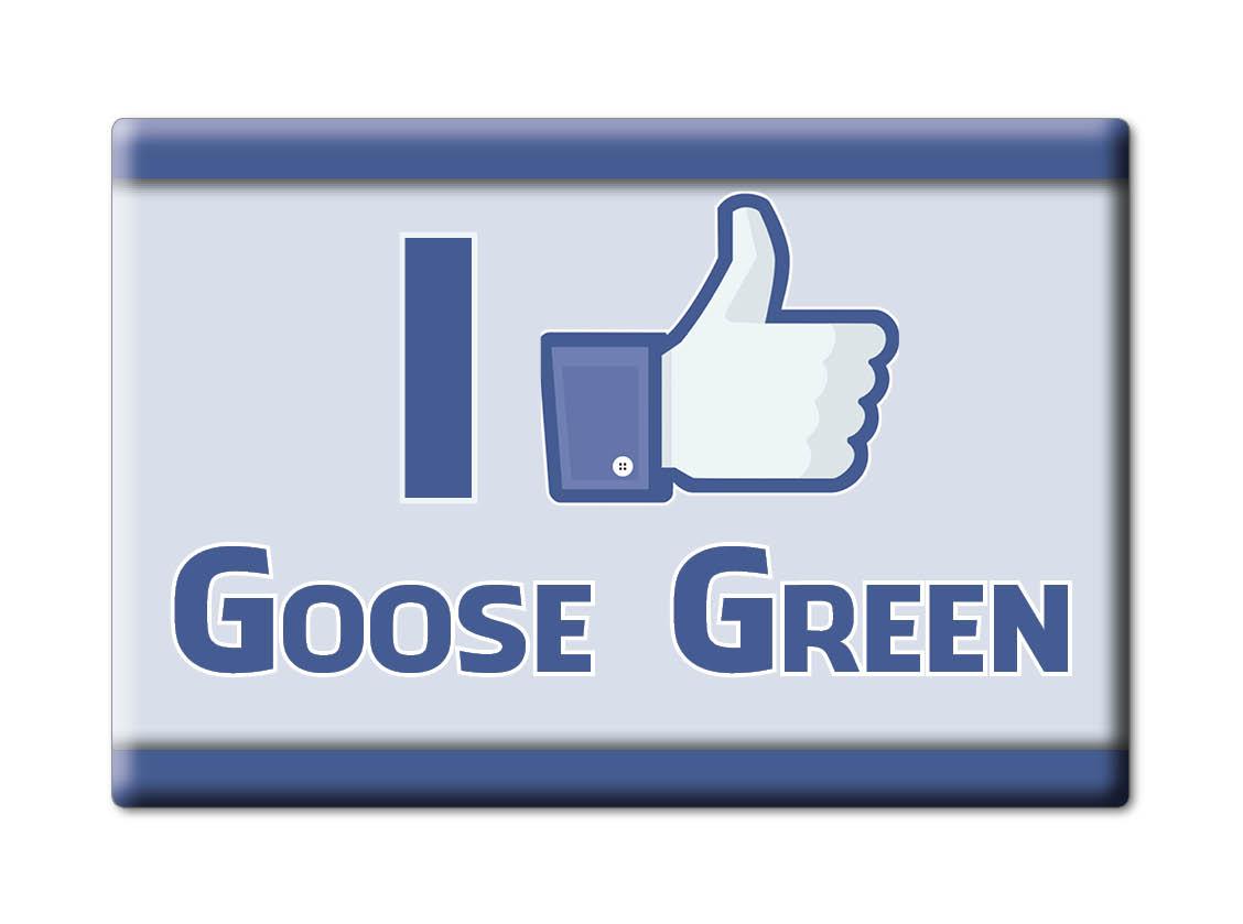 SOUVENIR-UK-ENGLAND-GLOUCESTERSHIRE-FRIDGE-MAGNET-UK-I-LOVE-GOOSE-GREEN-ENG